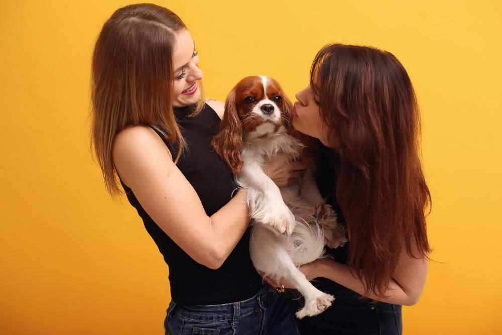 frases de mamás sobre mascotas